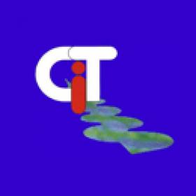 CIT - Management u. Führung logo