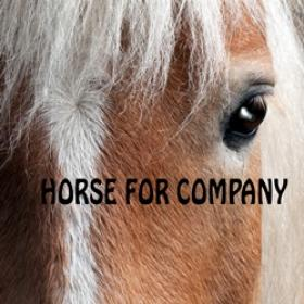 HORSE FOR COMPANY logo