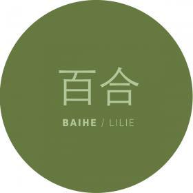 Chinazentrum für Sprache und Kultur logo