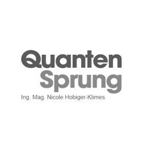 QuantenSprung logo