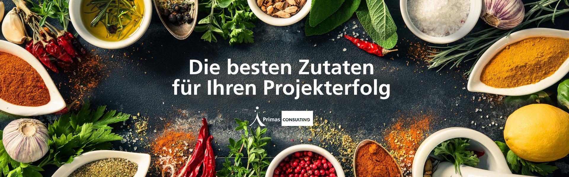 Primas CONSULTING GmbH cover