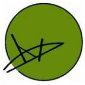 Academy4socialskills logo