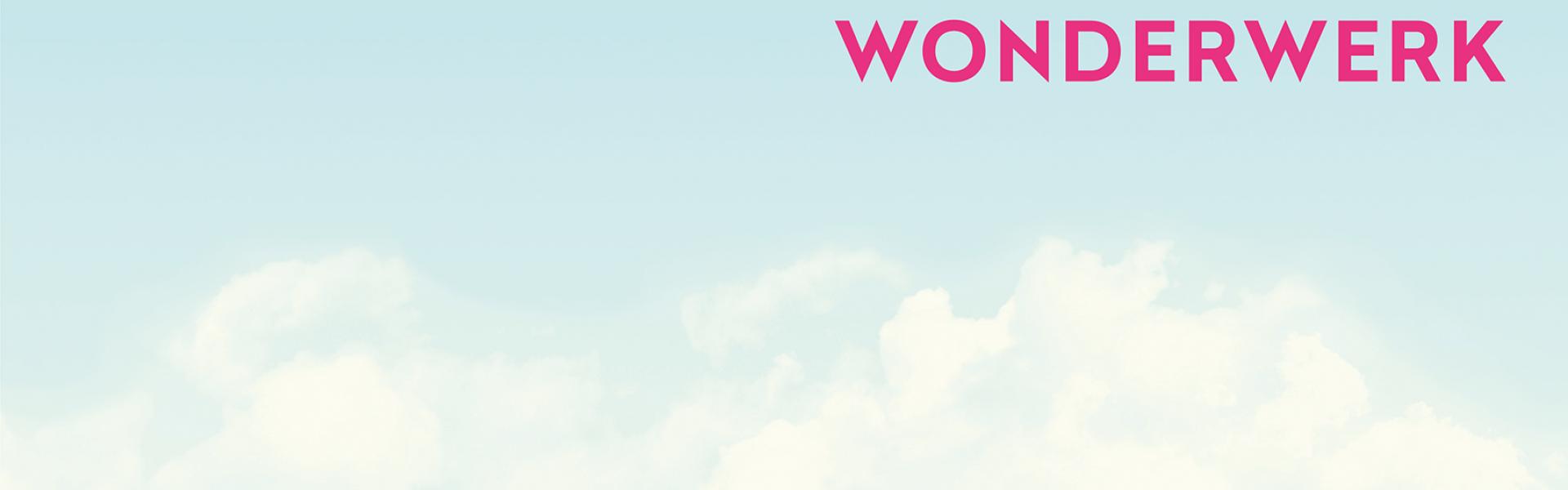 Wonderwerk Consulting GmbH cover